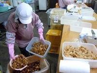 画像に alt 属性が指定されていません。ファイル名: 福山特殊農産5.jpg