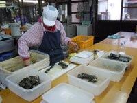 画像に alt 属性が指定されていません。ファイル名: 福山特殊農産6.jpg